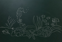 黒板に白いチョークで描いた海底とタツノオトシゴ