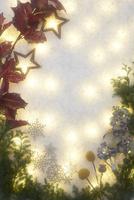 斑な光と冬の装い 10179009656  写真素材・ストックフォト・画像・イラスト素材 アマナイメージズ