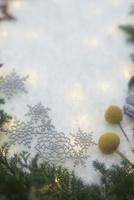 斑な光と冬の装い 10179009657  写真素材・ストックフォト・画像・イラスト素材 アマナイメージズ