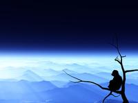 夜明けと猿 10185001940  写真素材・ストックフォト・画像・イラスト素材 アマナイメージズ