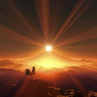 富士山の日の出を見るニワトリ