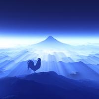富士山の日の出を見るニワトリ 10185002190| 写真素材・ストックフォト・画像・イラスト素材|アマナイメージズ