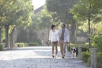 犬連れで散歩するミドルカップル
