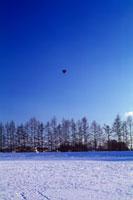 雪原に飛ぶ気球