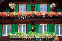 花の飾られたテラス