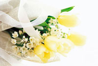 チューリップの花束
