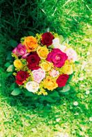 芝生と花束