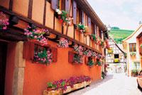 窓辺の花飾り ドイツ