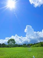 太陽と夏空に入道雲と芝生の緑