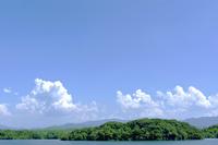 池と緑の樹木と入道雲