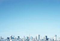 東京タワーと都心のビル群 10199000191| 写真素材・ストックフォト・画像・イラスト素材|アマナイメージズ