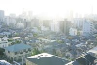 朝の横浜の町並み