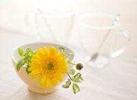 食卓の上に飾られたガーベラとコップ