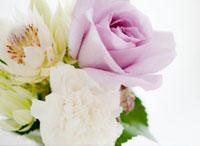 バラとカーネーションのフラワーアレンジメント