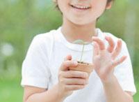 双葉を持つ子供の手 10208000986| 写真素材・ストックフォト・画像・イラスト素材|アマナイメージズ
