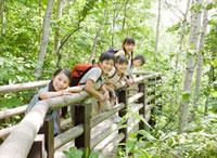 森のボードウォークに立つ5人の小学生
