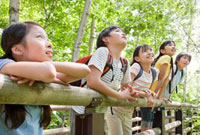 森の中に立つ5人の小学生 10208001021| 写真素材・ストックフォト・画像・イラスト素材|アマナイメージズ