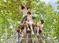 木の遊具で遊ぶ5人の小学生