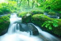 渓流 10210000182| 写真素材・ストックフォト・画像・イラスト素材|アマナイメージズ