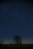 霧ヶ峰高原深夜の星空