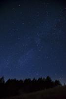 霧ヶ峰高原カラマツ林と深夜の星空
