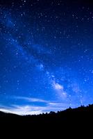 霧ヶ峰高原八島ヶ原湿原針樹と銀河