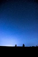霧ヶ峰高原二本のカラマツと西の方向の夜空