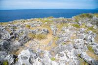 沖縄万座毛珊瑚岩とエメラルドグリーンの海