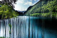 若葉の自然湖