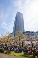 サクラ満開の東京ミッドタウン 10222012609| 写真素材・ストックフォト・画像・イラスト素材|アマナイメージズ