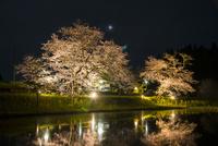 飯給駅ホームと水面に映る夜桜と月 10222012955| 写真素材・ストックフォト・画像・イラスト素材|アマナイメージズ