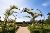 スードリー城のクイーンズ・ガーデン