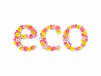 花で作ったエコの文字