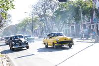 キューバ ハバナ市内の道を走る車