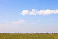マサイマラのサバンナと青空 10243000298| 写真素材・ストックフォト・画像・イラスト素材|アマナイメージズ