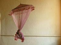 スリランカのコロニアル風の蚊帳