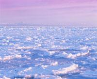 流氷と国後島の朝 10247000157| 写真素材・ストックフォト・画像・イラスト素材|アマナイメージズ