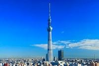 東京スカイツリー 10247001726| 写真素材・ストックフォト・画像・イラスト素材|アマナイメージズ