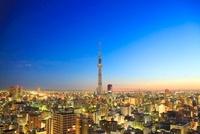 早朝の東京スカイツリー 10247001739| 写真素材・ストックフォト・画像・イラスト素材|アマナイメージズ