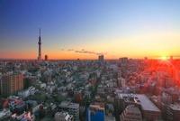 朝日と東京スカイツリーと下町両国の街並 10247001753| 写真素材・ストックフォト・画像・イラスト素材|アマナイメージズ