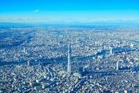 東京スカイツリーと隅田川 10247001871| 写真素材・ストックフォト・画像・イラスト素材|アマナイメージズ