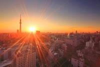浅草の街並と東京スカイツリーと朝日 10247001914| 写真素材・ストックフォト・画像・イラスト素材|アマナイメージズ