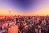 浅草の街並と東京スカイツリーと反射する夕日 10247001915| 写真素材・ストックフォト・画像・イラスト素材|アマナイメージズ