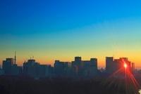 丸の内の高層ビル群と反射する朝日とスカイツリー 10247001922| 写真素材・ストックフォト・画像・イラスト素材|アマナイメージズ