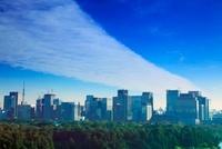 丸の内の高層ビル群と東京スカイツリー 10247001924| 写真素材・ストックフォト・画像・イラスト素材|アマナイメージズ