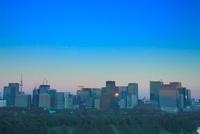 丸の内の高層ビル群と反射する夕日とスカイツリー 10247001925| 写真素材・ストックフォト・画像・イラスト素材|アマナイメージズ