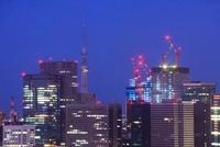 薄暮の丸の内の高層ビル群と東京スカイツリー 10247001932| 写真素材・ストックフォト・画像・イラスト素材|アマナイメージズ