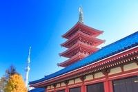 浅草寺の五重塔と東京スカイツリー 10247001959| 写真素材・ストックフォト・画像・イラスト素材|アマナイメージズ