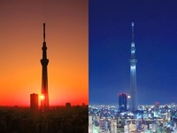 東京スカイツリー,朝日と月とライトアップ 10247003276| 写真素材・ストックフォト・画像・イラスト素材|アマナイメージズ