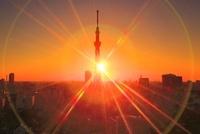 東京スカイツリーと朝日の光芒 10247003316| 写真素材・ストックフォト・画像・イラスト素材|アマナイメージズ